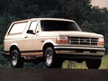 Ford - Bronco V - 5.0 EFl V8